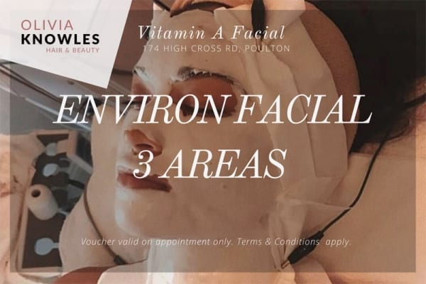 Environ Facial
